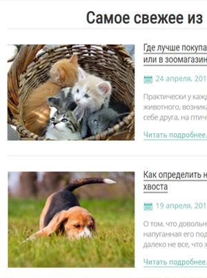 Zoo website image